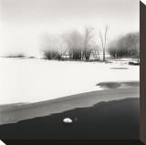 Petrie Island, Study, no. 1 Stretched Canvas Print by Andrew Ren