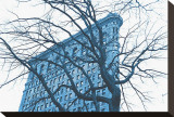 Blue Flatiron Stretched Canvas Print by Erin Clark