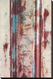 Rust Textures Stretched Canvas Print by Erin Clark