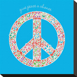 Give Peace a Chance Stretched Canvas Print by Erin Clark