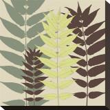 Garden Botanical Stretched Canvas Print by Erin Clark