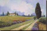 Holiday in Tuscany Stretched Canvas Print by  Hawley