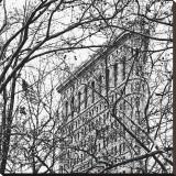 Veiled Flatiron Building (detail) Stampa trasferimenti su tela di Erin Clark