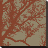Cinnamon Tree IV Stretched Canvas Print by Erin Clark