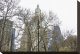 Woolworth Building from City Hall Park Stretched Canvas Print by Erin Clark