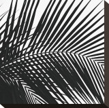 Palms, no. 10 (detail) Stretched Canvas Print by Jamie Kingham