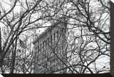 Veiled Flatiron Building Stretched Canvas Print by Erin Clark