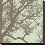 Winter Tree IV Stretched Canvas Print by Erin Clark