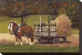 Amish Harvest Opspændt lærredstryk af Kathleen Green