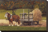 Amish Harvest Stretched Canvas Print by Kathleen Green