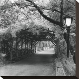 Central Park Pergola Stretched Canvas Print by Erin Clark