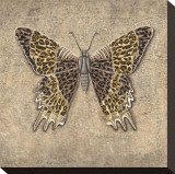 Leopard Butterfly Stretched Canvas Print by Jennifer Brice