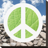 Green Peace Stretched Canvas Print by Jenny Kraft
