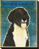 Portuguese Water Dog Stretched Canvas Print by John Golden