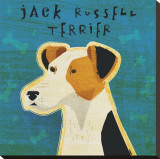 Jack Russell Terrier Stretched Canvas Print by John Golden