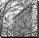 Veiled Flatiron Building (detail) Stretched Canvas Print by Erin Clark