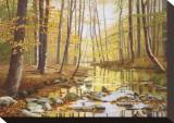 Golden Flow Stretched Canvas Print by Gene Mcinerney