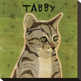 Tabby (grey) Stretched Canvas Print by John Golden