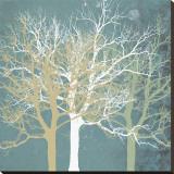 Tranquil Trees Lærredstryk på blindramme af Erin Clark