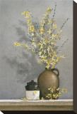 Forsythia Stretched Canvas Print by Ray Hendershot