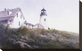 Gulls at Pemaquid Stretched Canvas Print by Ray Hendershot