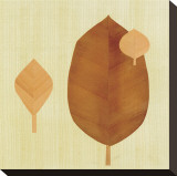 Leaf I Stretched Canvas Print by Pyper Morgan