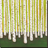 Birch Forest Stretched Canvas Print by Lisa Congdon