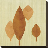 Leaf II Stretched Canvas Print by Pyper Morgan