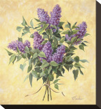 Lilac Season II Stretched Canvas Print by  Telander