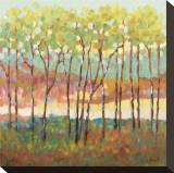 Farve i det fjerne, Distant Color Opspændt lærredstryk af Libby Smart