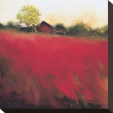 Red Land (detail) Stretched Canvas Print by Thomas Stotts