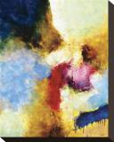 Semilla de un Poema Stretched Canvas Print by Javier Lopez Barbosa