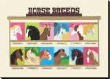 Horse Breeds Stretched Canvas Print by Janell Genovese