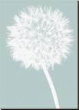 Dandelion (blue) Stretched Canvas Print by Jenny Kraft