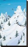 Backcountry Leinwand von Steven Valiere