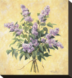 Lilac Season I Stretched Canvas Print by  Telander