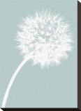 Dandelion Tilt (blue) Lærredstryk på blindramme af Jenny Kraft
