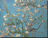 Amandeltakken in bloei, Saint-Remy, ca. 1890 Kunstdruk op gespannen doek van Vincent van Gogh