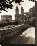 Central Park Bridges I Stretched Canvas Print by Christopher Bliss
