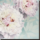 Peony on Blue Stretched Canvas Print by Elizabeth Hellman