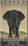 Serengeti Reproduction transférée sur toile par Steve Forney