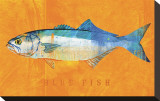 Bluefish Stretched Canvas Print by John Golden