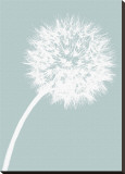 Dandelion Tilt (blue) Stretched Canvas Print by Jenny Kraft