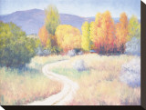 October Afternoon Stretched Canvas Print by B. Oliver