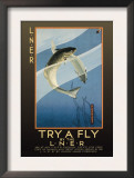 Try a Fly Posters by V.l. Danvers