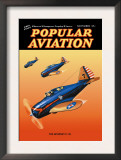The Seversky P-35 Posters by Herman R. Bollin
