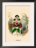 Camellia Posters by J.J. Grandville