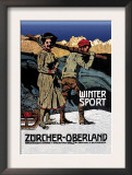 Winter Sport: Cross-Country Skiing Poster