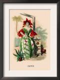 Cactus Posters by J.J. Grandville