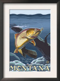 Trout Fishing Cross-Section, Montana Posters
